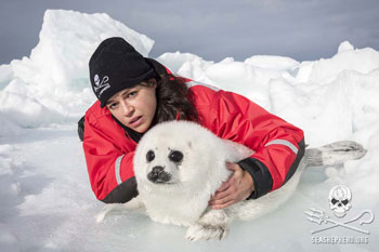 Michelle Rodriguez and harp seal pup