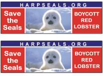 Save the Seals - Boycott Red Lobster