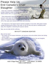 Please Help Us End Canada's Cruel Slaughter Ad