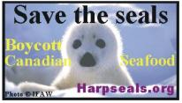 Save the Seals Stickers