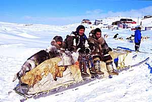 Traditional Inuit sled- photo by Ansgar Walk
