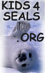 Kids4Seals Web Site