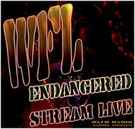 WFL - Internet Streaming Audio