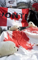 Paris Seal Hunt Protest