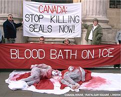 how to help stop slaughter houses canada