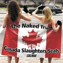 Peta Seal Hunt Protest