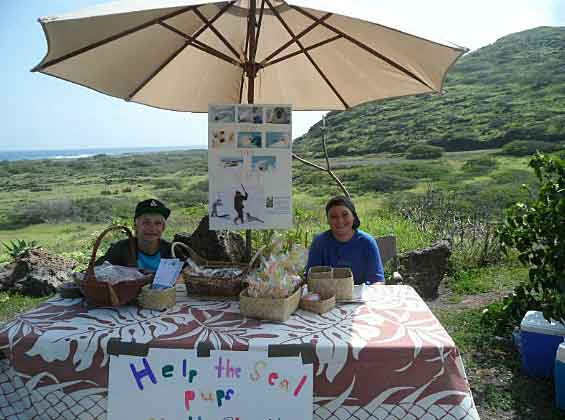 Bake sale - Conor for Harp Seals - Hawaii